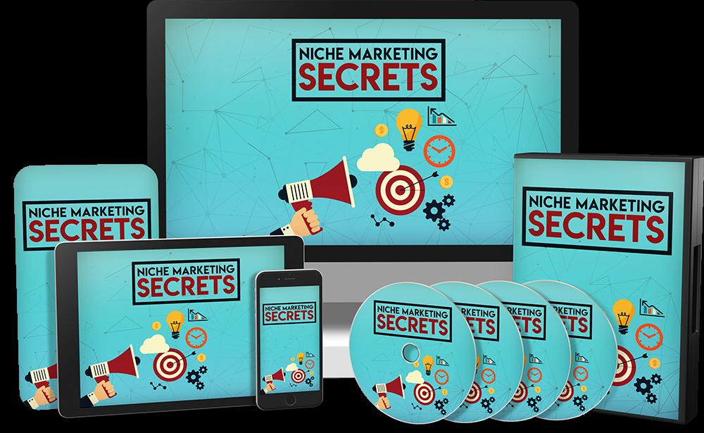 niche marketing secrets plr